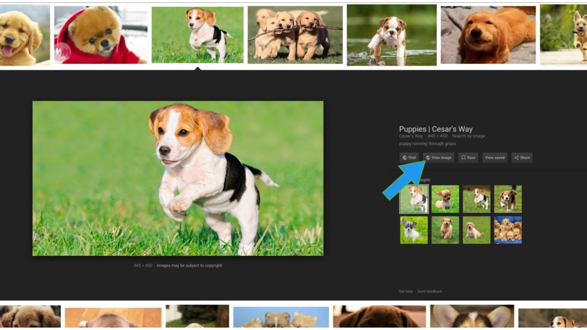 Missing Google Search's View Image Button? There's A Fix