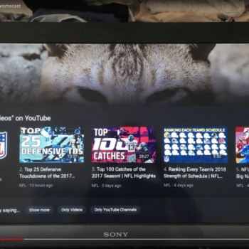 More Visualizations For Chromecast Via Google Assistant: YouTube Lists