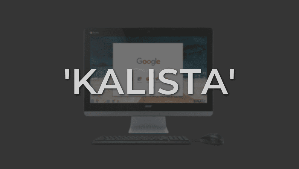 Confirmed: 'Kalista' Will Be An Intel 8th Generation Chromebase