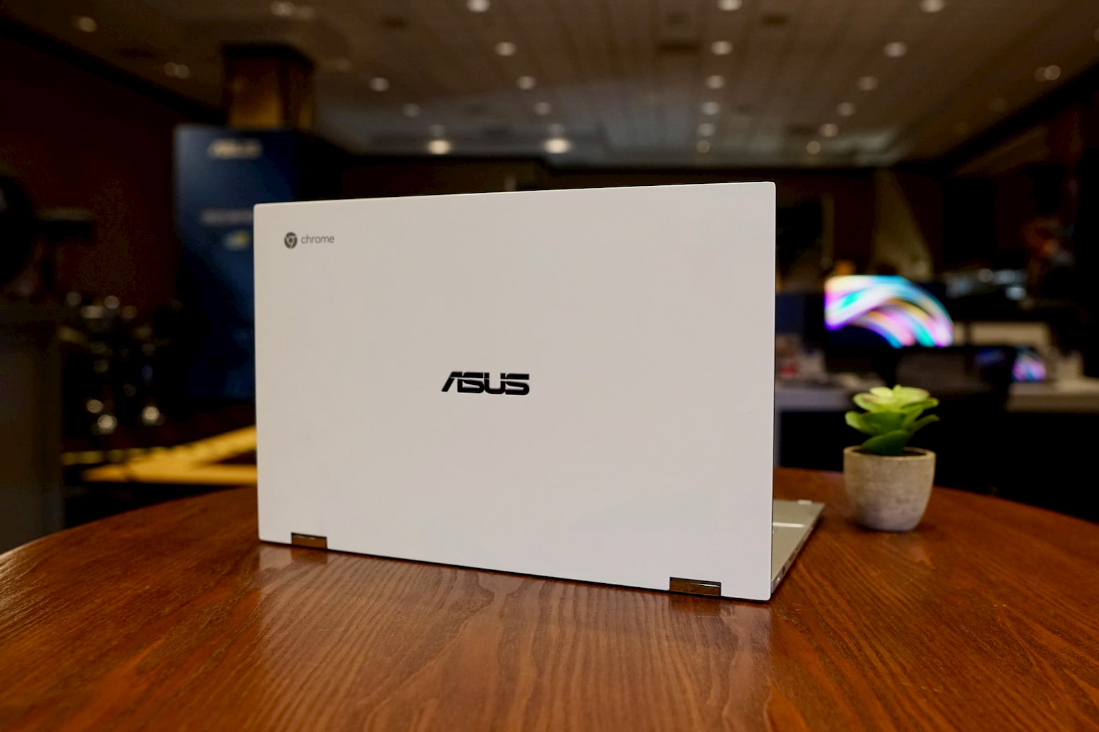ASUS Chromebook C436 gets a release date and multiple models up for pre-order