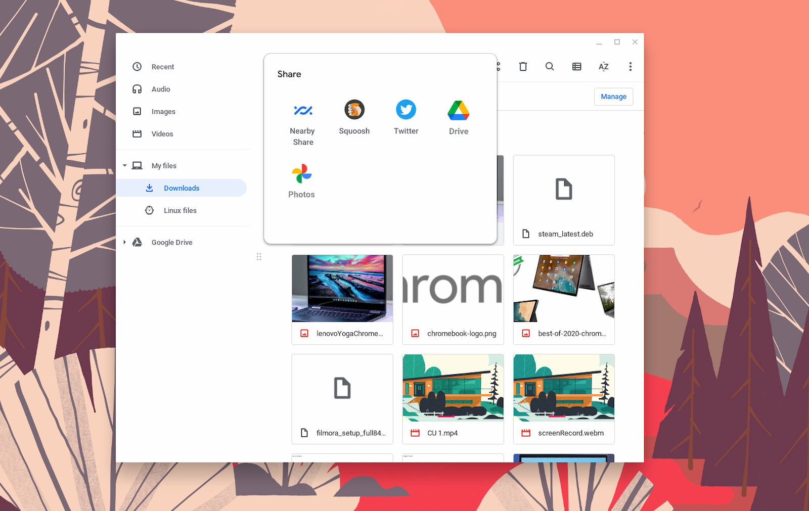 Chromebook files sharing will soon work with PWAs